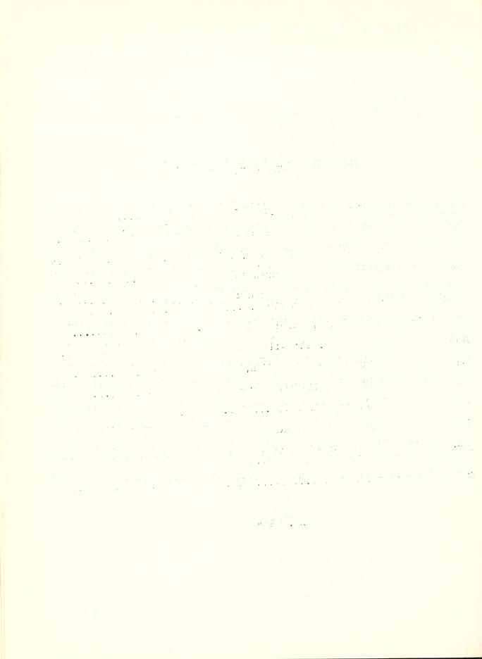 Leaf0290_s4